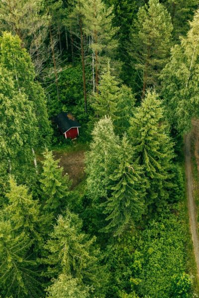 Aerial view of the road through the spruce forest. red cabin in the forest in rural Finland
